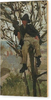 Wood Print featuring the painting Boy In A Tree by Henry Scott Tuke