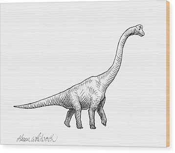 Wood Print featuring the drawing Brachiosaurus Black And White Dinosaur Drawing  by Karen Whitworth