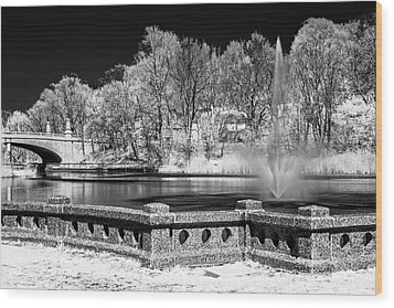 Wood Print featuring the photograph Branch Brook Park New Jersey Ir by Susan Candelario