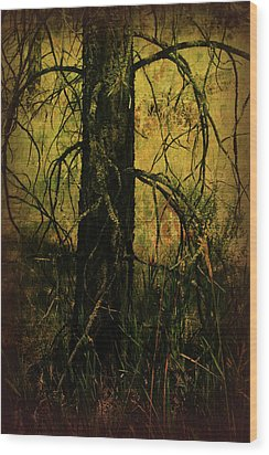 Branching Out Wood Print by Bonnie Bruno