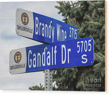 Wood Print featuring the photograph Brandywine And Gandalf Street Signs by Gary Whitton