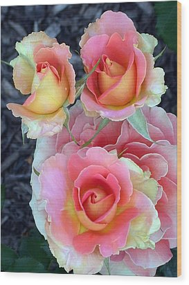 Brass Band Roses Wood Print by Living Color Photography Lorraine Lynch