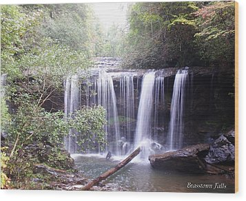 Brasstown Falls Wood Print by Lane Owen