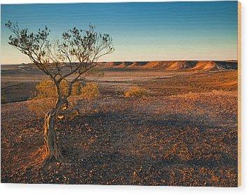 Breakaway Dawn Wood Print by Mike  Dawson