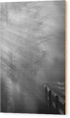 Wood Print featuring the photograph Breaking Through by Tom Vaughan