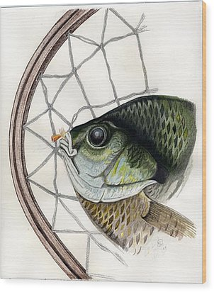Bream And Net Wood Print by H C Denney