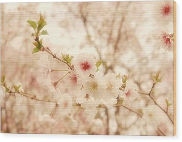 Breathe - Holmdel Park Wood Print by Angie Tirado