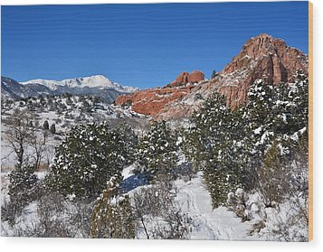 Breathtaking View Wood Print by Diane Alexander