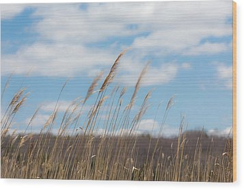 Breeze Wood Print