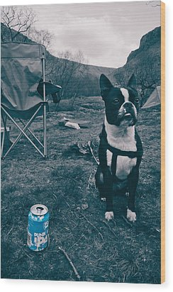 Wood Print featuring the photograph Brewdog Bull by Justin Albrecht