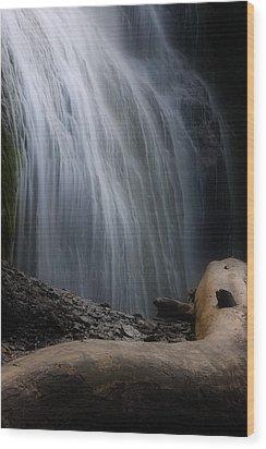 Bridal Falls Wood Print by Naman Imagery