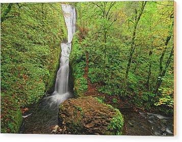 Wood Print featuring the photograph Bridal Veil Falls by Jonathan Davison