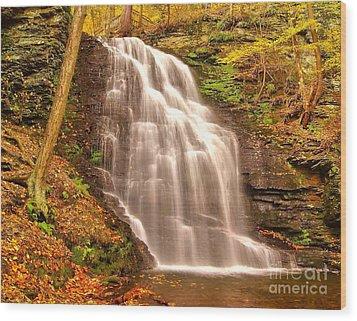 Bridal Veil Falls Wood Print by Nick Zelinsky