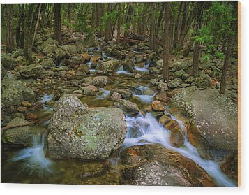 Bridalveil Creek Wood Print