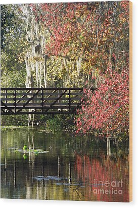 Bridge At Sawgrass Lake Park Wood Print by Rose  Hill