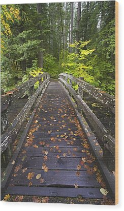 Bridge In A Park Wood Print by Craig Tuttle