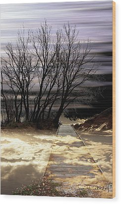 Bridge Wood Print by Joan Ladendorf