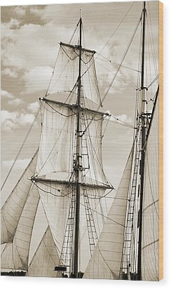 Brigantine Tallship Fritha Sails And Rigging Wood Print by Dustin K Ryan
