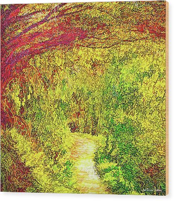 Wood Print featuring the digital art Bright Afternoon Pathway - Trail In Santa Monica Mountains by Joel Bruce Wallach