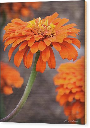 Bright And Beautiful Wood Print by Kathy M Krause