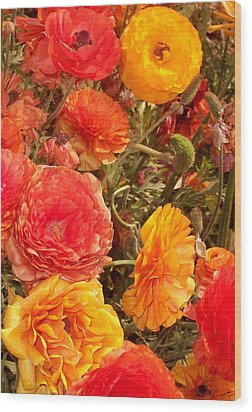 Bright And Sunny Wood Print by Jean Booth