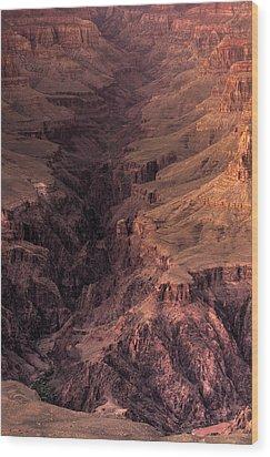 Bright Angel Canyon Grand Canyon National Park Wood Print by Steve Gadomski