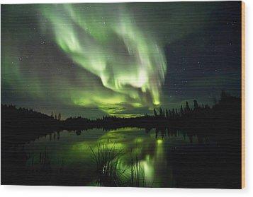 Bright Lights Wood Print