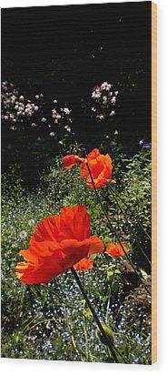 Bright Orange Wood Print by Renate Nadi Wesley