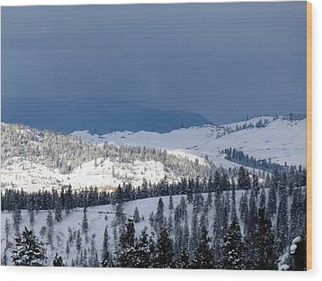 Wood Print featuring the photograph Bright Patch Of Sunshine by Will Borden