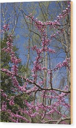 Bright Pink Rosebud Flowers Wood Print by Brendan Reals