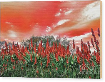 Wood Print featuring the photograph Bright Red Aloe Flowers By Kaye Menner by Kaye Menner