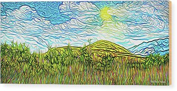 Bright Sky Summer - Field In Boulder County Colorado Wood Print