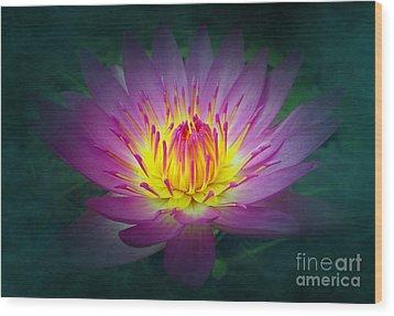 Brightly Glowing Lotus Flower Wood Print by Yali Shi