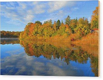 Brilliance Of Autumn Wood Print by Dianne Cowen