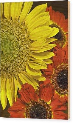 Wood Print featuring the photograph Brilliant Autumn by Elsa Marie Santoro