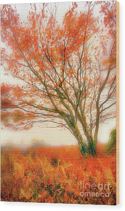 Wood Print featuring the painting Brilliant Orange Autumn Fall Colors Tree Ap by Dan Carmichael