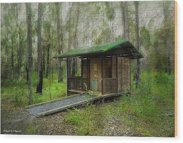 Brimbin Nature Reserve 01 Wood Print