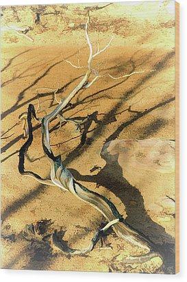 Brins Mesa 07-100 Burnt Wood Print by Scott McAllister