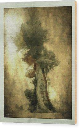 Bristlecone Pine Wood Print