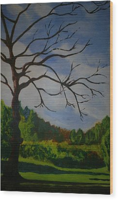 British Landscape Wood Print by James Dolan