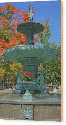 Broadway Fountain II Wood Print by Steven Ainsworth