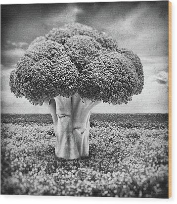 Broccoli Tree Wood Print by Wim Lanclus