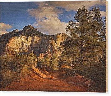 Broken Arrow Trail Pnt Wood Print