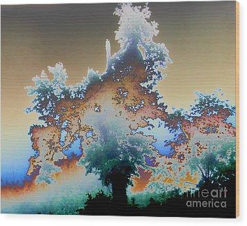 Broken Dream Tree  Wood Print by Jesse Ciazza