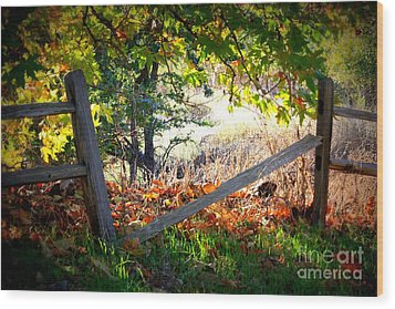 Broken Fence In Sycamore Park Wood Print by Carol Groenen