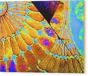 Broken Wood Print by Lenore Senior