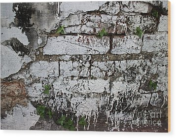 Wood Print featuring the photograph Broken Stucco Wall With Whitewashed Exposed Brick Texture And Ve by Jason Rosette