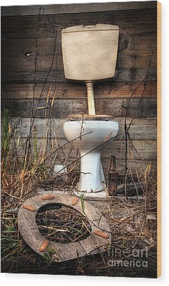 Broken Toilet Wood Print