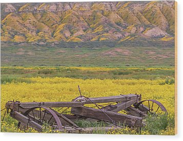Wood Print featuring the photograph Broken Wagon In A Field Of Flowers by Marc Crumpler
