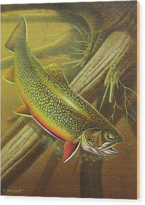 Brook Trout Cover Wood Print by JQ Licensing